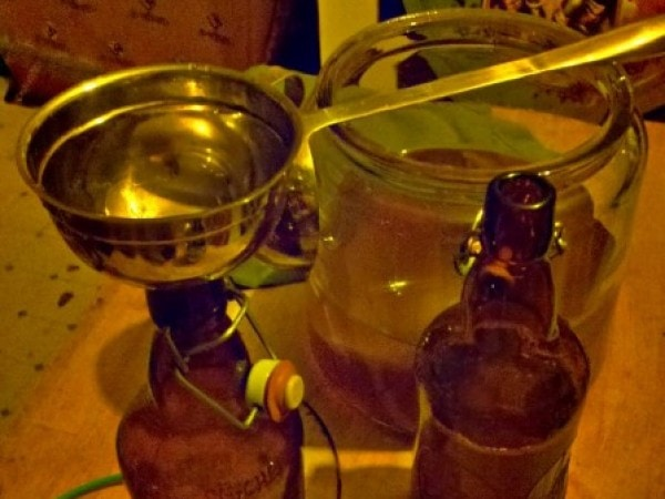 kombucha fermentation's last step