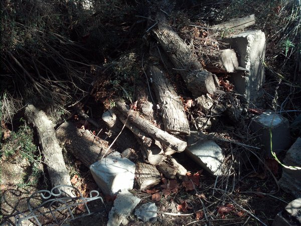 Found two piles of old fire wood on the property. These are great for the hugelkultur aspect.