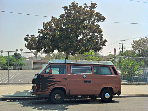 First day with Rusty - Westfalia Vanagon 1983 - The Greenman Project